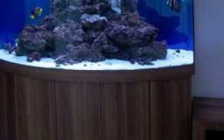 Тумба под аквариум своими руками: выбор чертежа и материалов, советы по изготовлению подставки