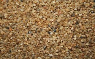 Кварцевый песок для аквариума: классификация, характеристики белого аквариумного песка
