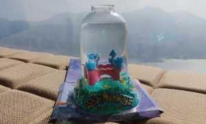 Морские обезьянки: описание ракообразных, выращивание в домашних условиях