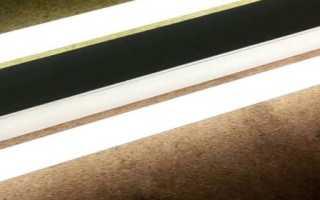 Лампы для аквариума: какие лучше выбрать и отличаются ли флуоресцентные и люминесцентные устройства