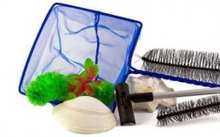 Аксессуары для аквариума: общие характеристики основных и вспомогательных принадлежностей