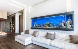 Аквариум в интерьере дома и квартиры: варианты конструкций искусственного водоёма, дизайн гостиной
