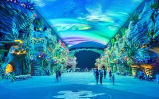 Самый большой аквариум в мире: как называется, описание, ТОП-10 океанариумов планеты