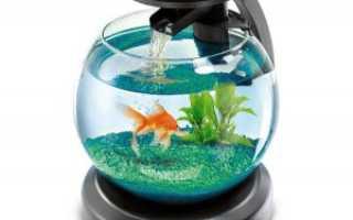 Крышка для аквариума: назначение и материалы, изготовление круглого изделия и подсветки своими руками, советы